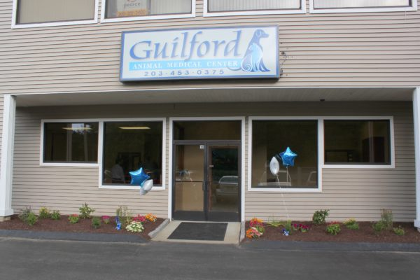 guilford outside
