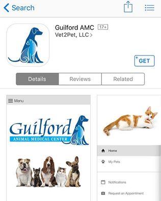 guilford app